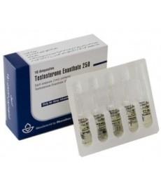 Testosterone Enanthate Iran, Aburaihan
