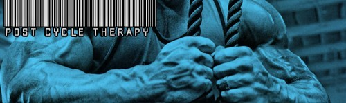 Poster cycle de therapie